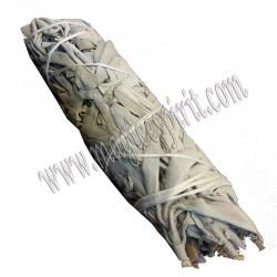 Atado Salvia Blanca 23-26cm